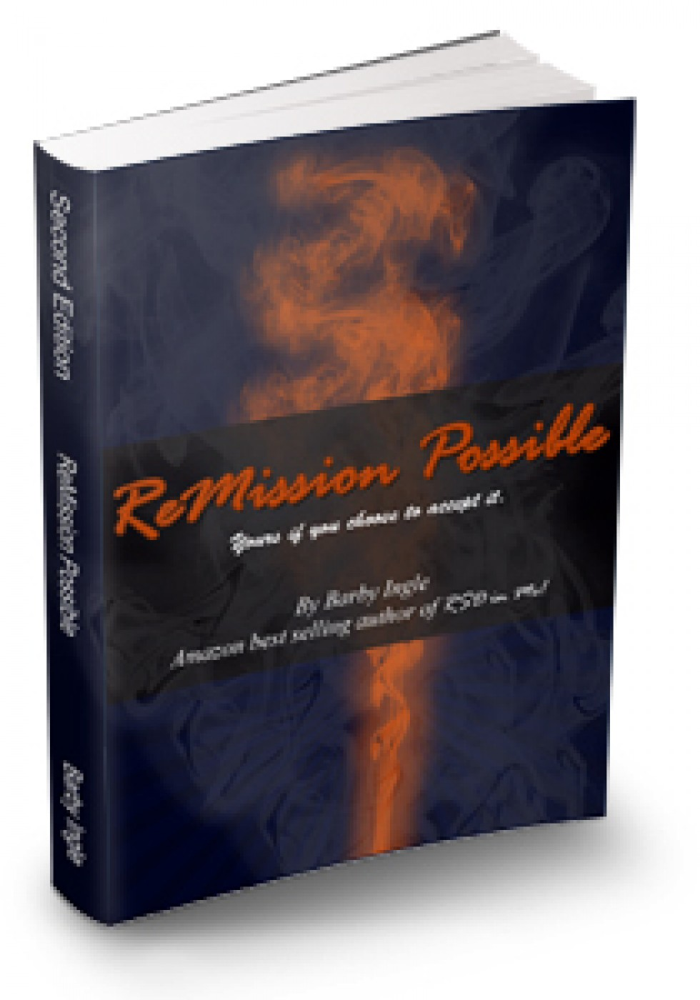 ReMission Possible